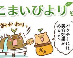 えこまいくまーの4コマ漫画 vol.62
