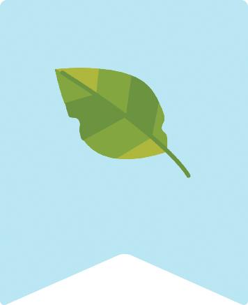 落ち葉や草花・枝は緑のリサイクル
